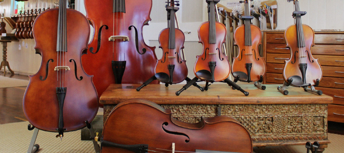 Violin, Viola, Cello and Double Bass - What's The Difference?