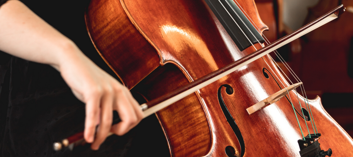 Cello Price Guide (What to Expect in Every Price Range!)