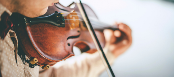 Starting the Violin as an Adult Beginner: What to Expect