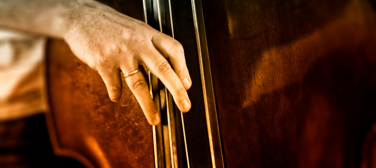 Double Bass Price Guide (What To Expect in Every Price Range!)