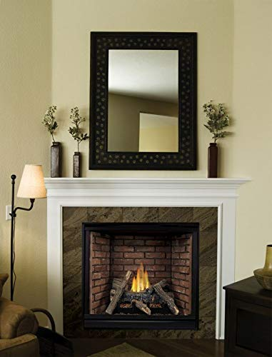 Empire Comfort Systems Tahoe Clean Face Traditional DV Fireplace DVCP42BP70P - Liquid Propane