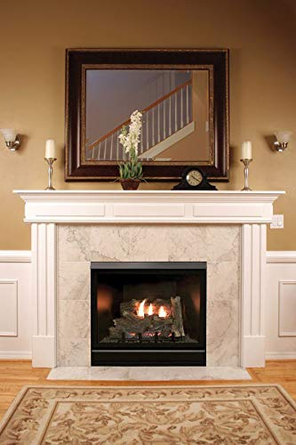 Empire Comfort Systems Tahoe Clean Face Contemporary Fireplace DVCC32BP32P - Liquid Propane