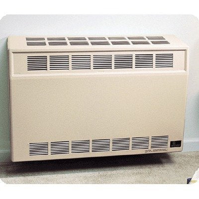 Direct-Vent Wall Furnace Size: 25,000 Btu, Fuel: Natural Gas