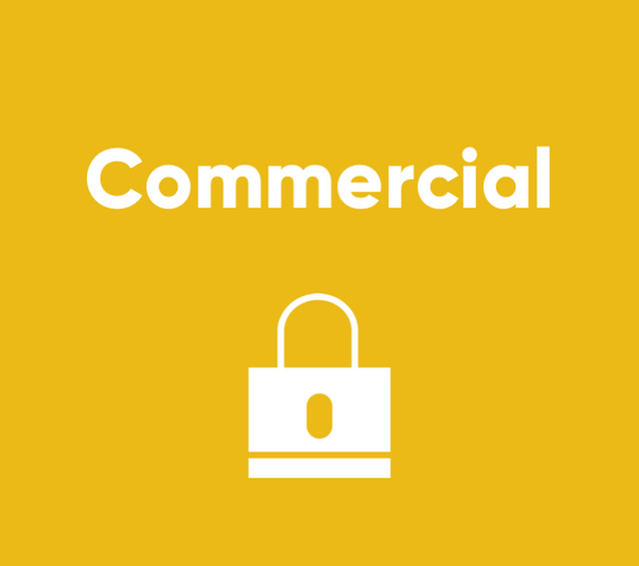 Security - Commercial