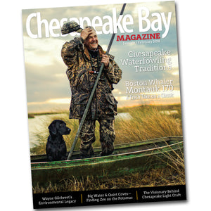 Single Copy of Chesapeake Bay Magazine