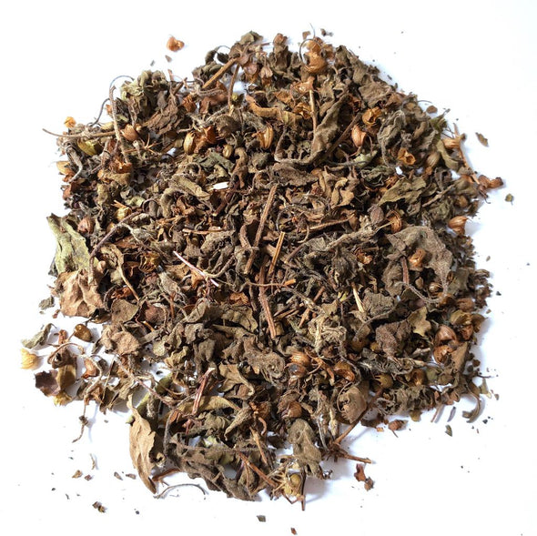 purple krishna tulsi tea