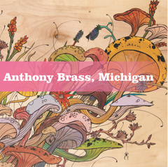 Anthony Brass, Michigan