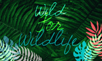 Photo Tiles, Acrylic Prints, Photo Wall Tiles, Wall Art, Wall Decor, Home Decor, Photo Prints, Crystal Bialoskurski, Wild for Wildlife (donating 50% of profits to help save the Amazon) - PicFoams.com