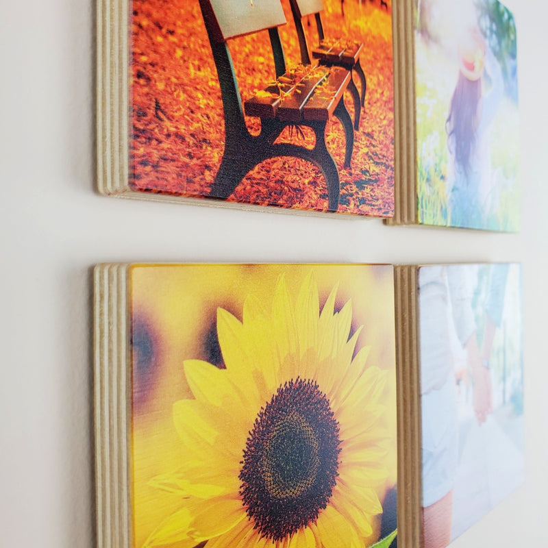 Photo Tiles, Acrylic Prints, Photo Wall Tiles, Wall Art, Wall Decor, Home Decor, Photo Prints, 4x4 EcoWoodPics™ Thick Full Print - PicFoams.com