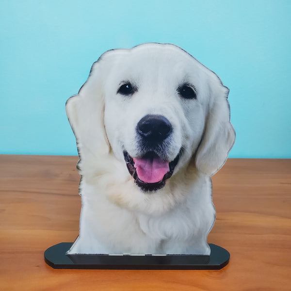 Photo Tiles, Acrylic Prints, Photo Wall Tiles, Wall Art, Wall Decor, Home Decor, Photo Prints, 5x7 AcryliCuts™ Therapy Dog Statuette - Myrtle - PicFoams.com