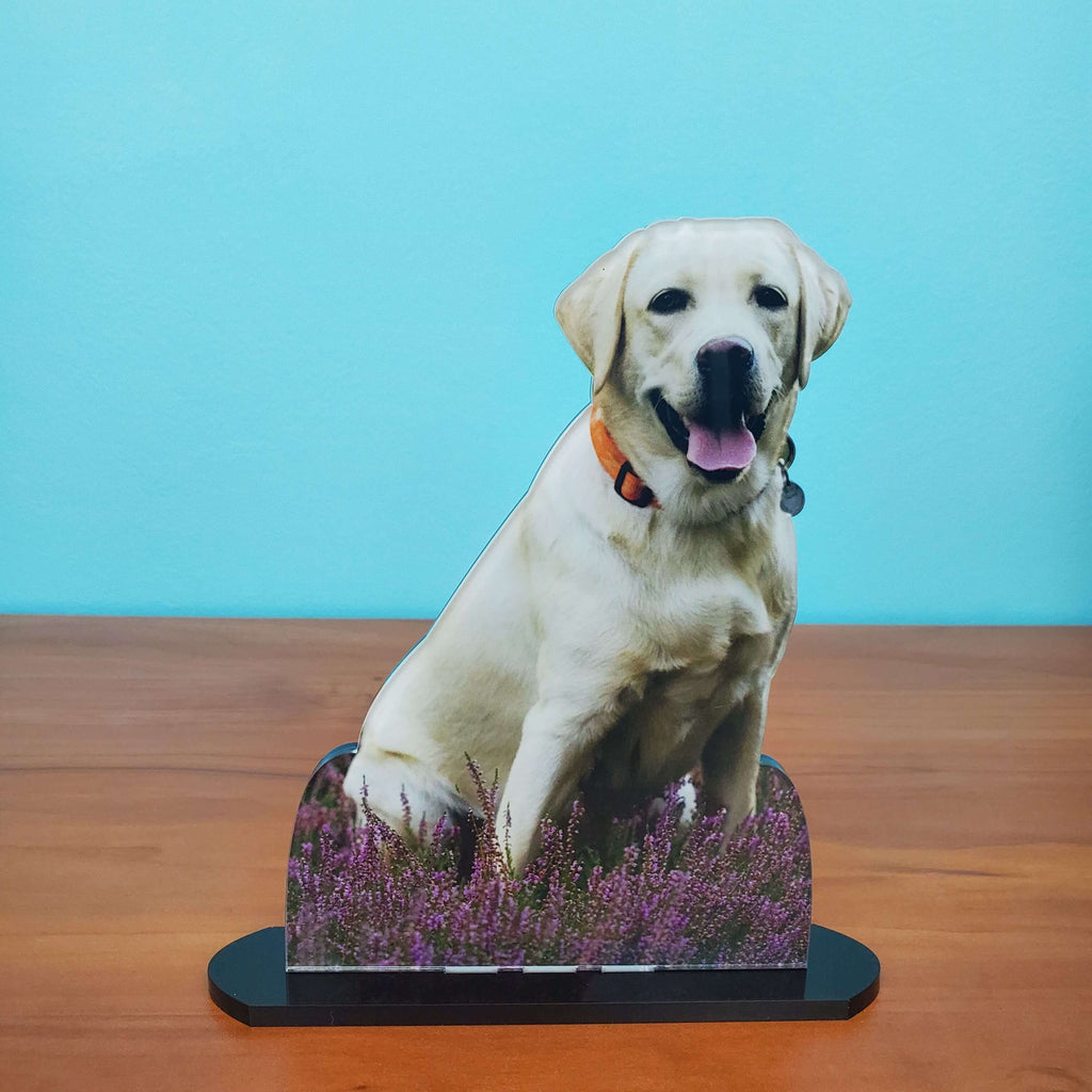 Photo Tiles, Acrylic Prints, Photo Wall Tiles, Wall Art, Wall Decor, Home Decor, Photo Prints, 5x7 AcryliCuts™ Therapy Dog Statuette - Dudley - PicFoams.com