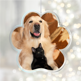 Acrylic Glass Photo Ornaments Paw Print