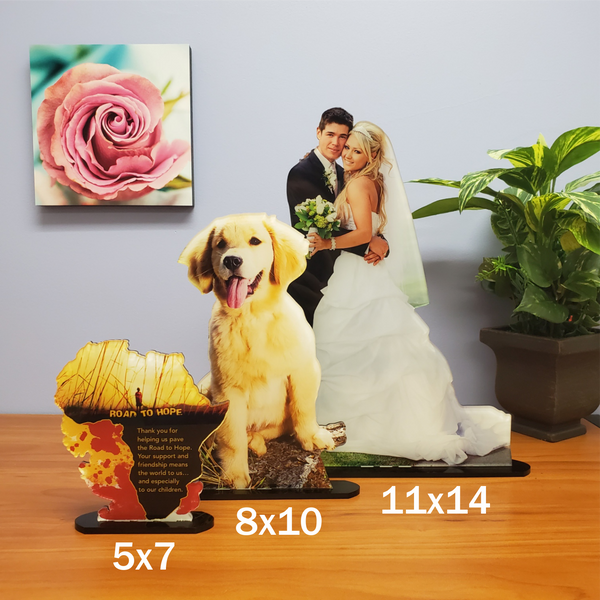 Photo Tiles, Acrylic Prints, Photo Wall Tiles, Wall Art, Wall Decor, Home Decor, Photo Prints, 8x10 AcryliCuts™ Custom Photo Statuettes - Vertical - PicFoams.com