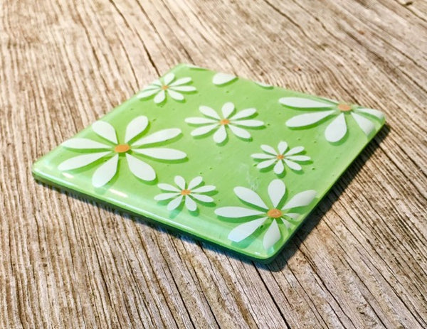 Set of 4 White Daisy Coasters - Lime