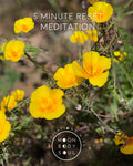 Five Minute Reset Meditation