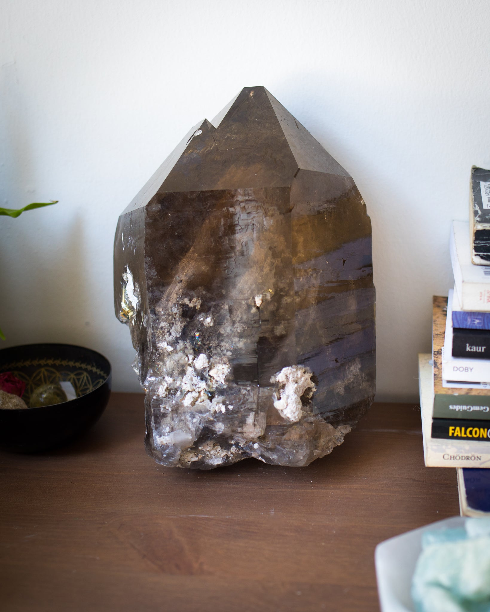 Massive Smokey Quartz with Golden Rutiles - Statement Piece