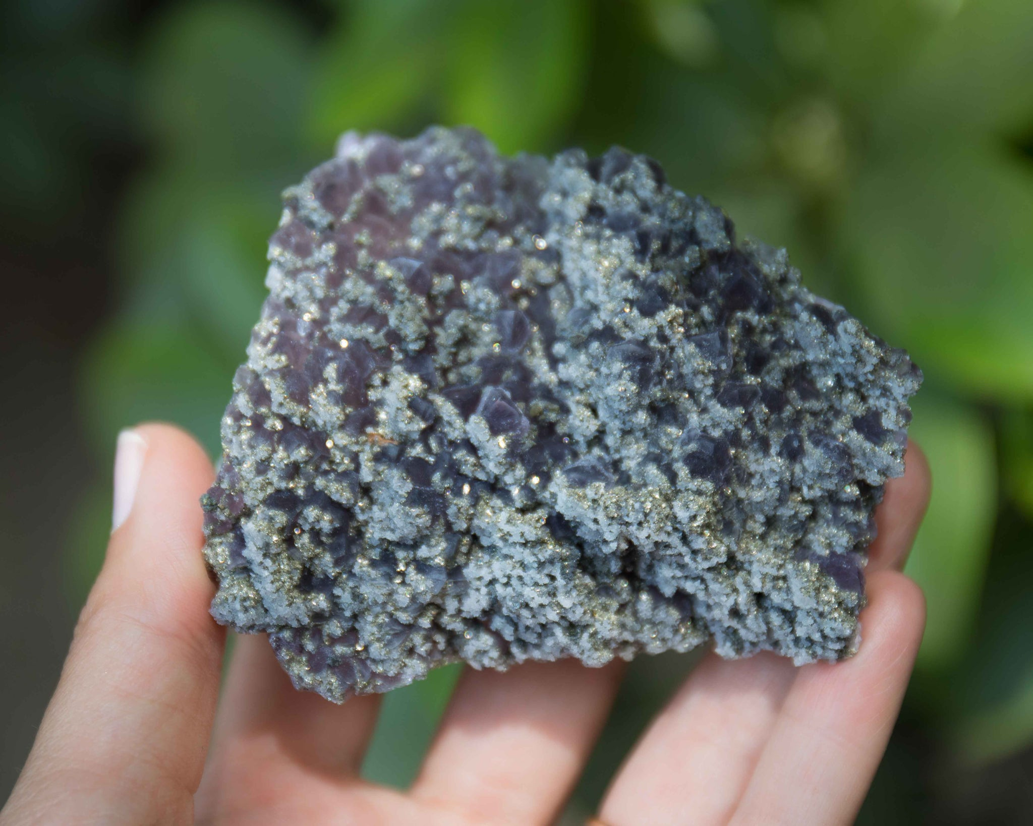 Amethyst with Pyrite A