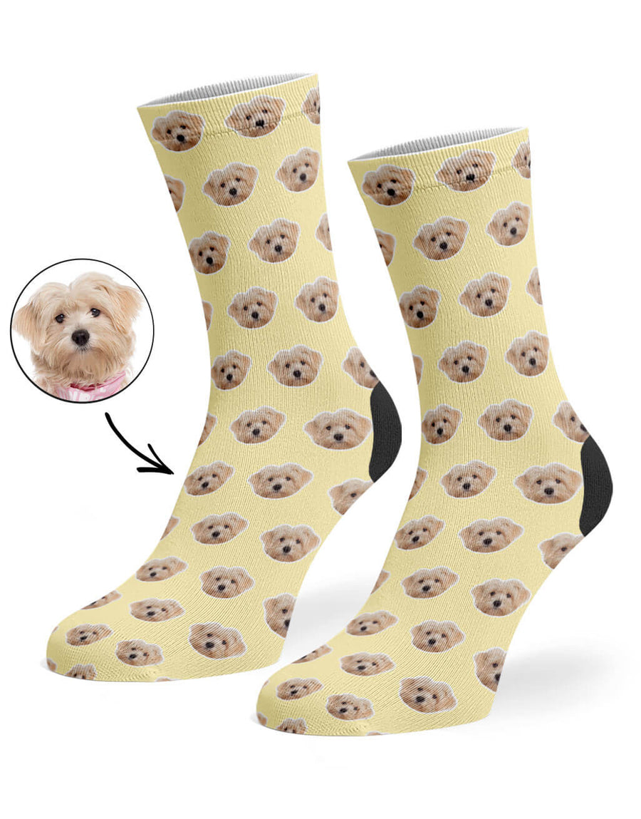 Your Dog Pattern Socks