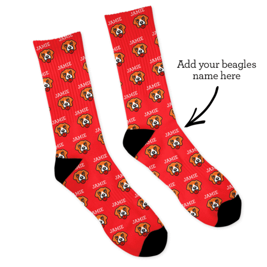 Personalized Named Beagle Socks