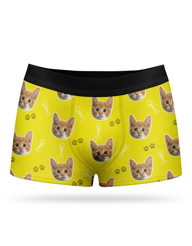 Your Cat on Boxers