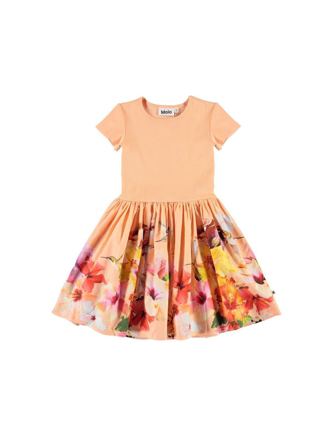 Coral Hummingbirds Dress