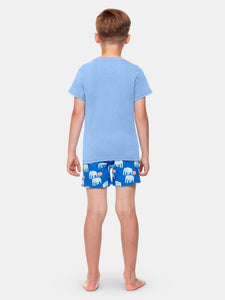 Boys Chambray Blue T-Shirt