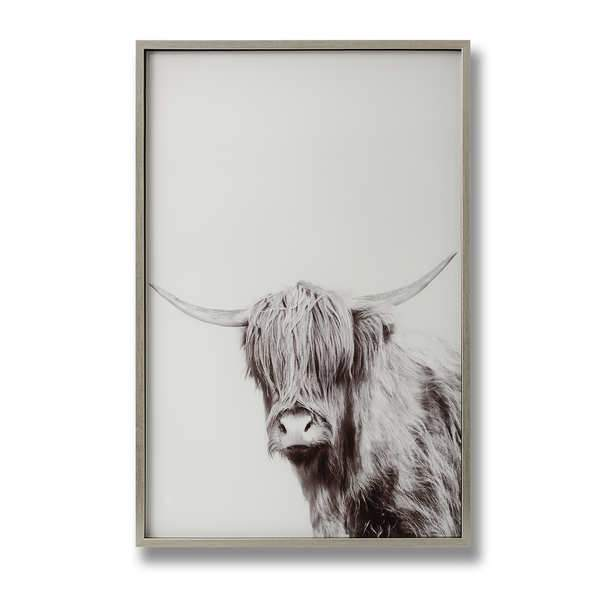 Highland Cow Print in Frame