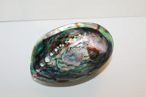 Paua Shell for Smudging