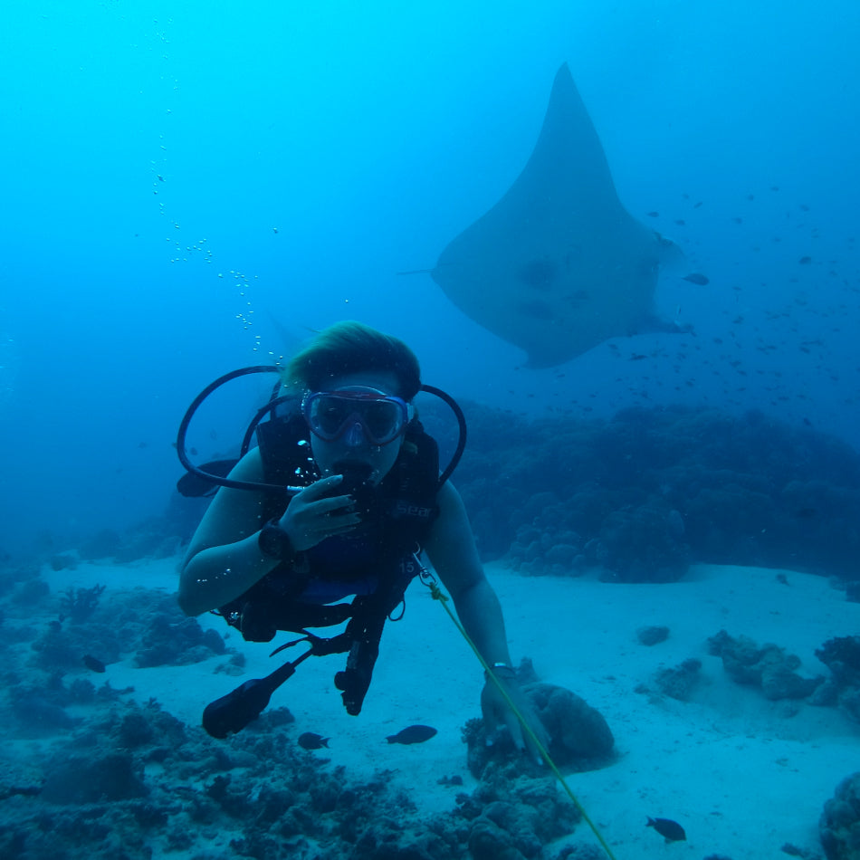 A scuba diver with a manta ray and coral in the background