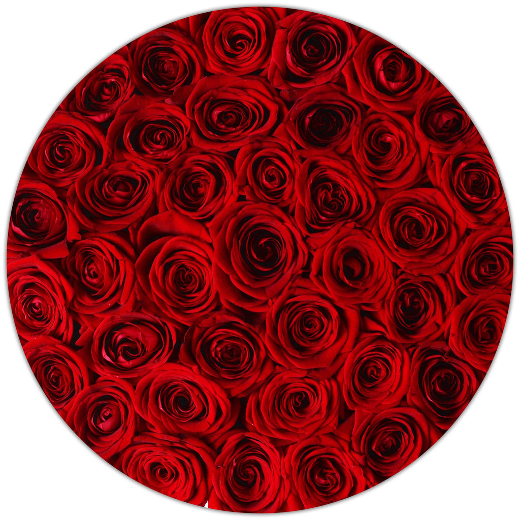 Medium - Red Roses - Grey Box - The Million Roses Budapest