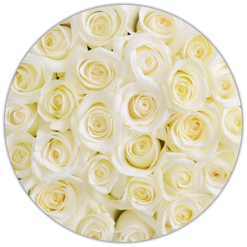Small - White  Roses - White Box - The Million Roses Slovakia