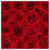 Cube - Red Roses - White Box - The Million Roses Slovakia