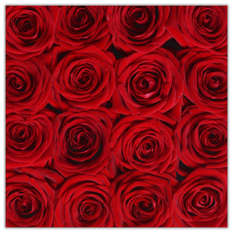 Cube - Red Roses - Black Box