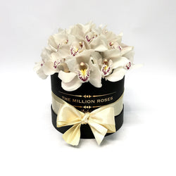 Small - White Orchids - Black Box - The Million Roses Slovakia