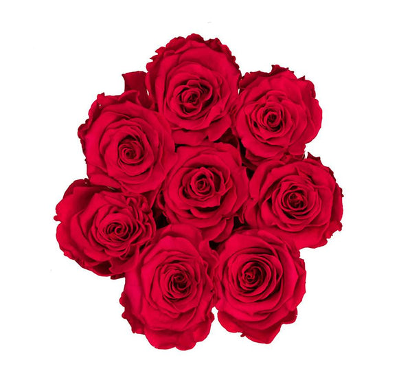 The Million Basic - Red Eternity Roses - White Box - The Million Roses Slovakia