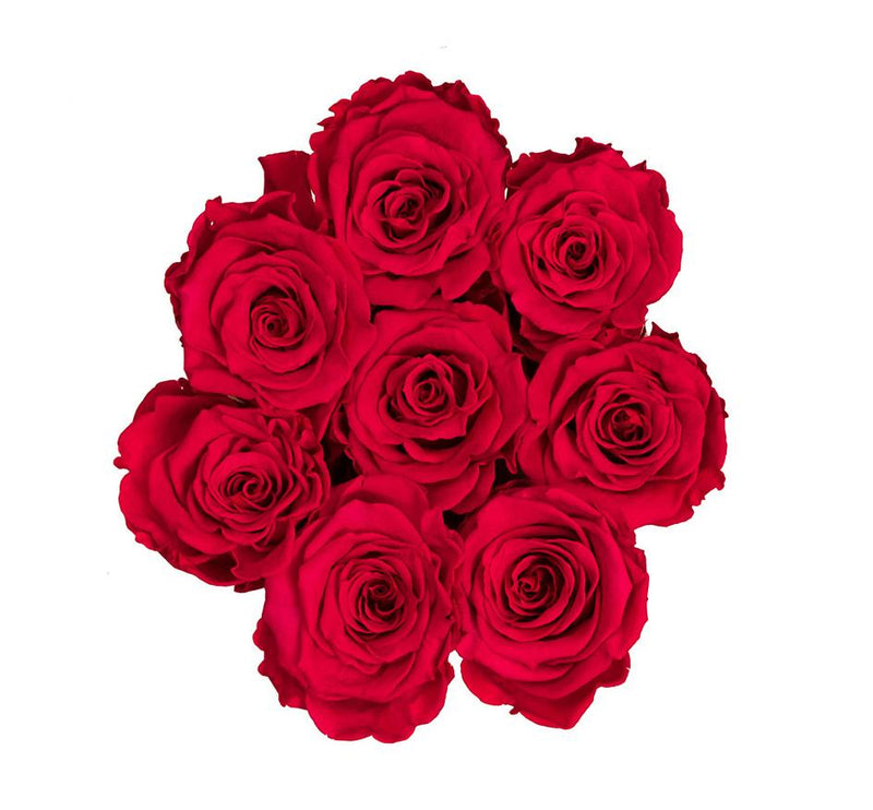 The Million Basic - Red Eternity Roses - Black Box - The Million Roses Slovakia