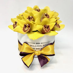 Small - Yellow Orchids - White Box - The Million Roses Slovakia