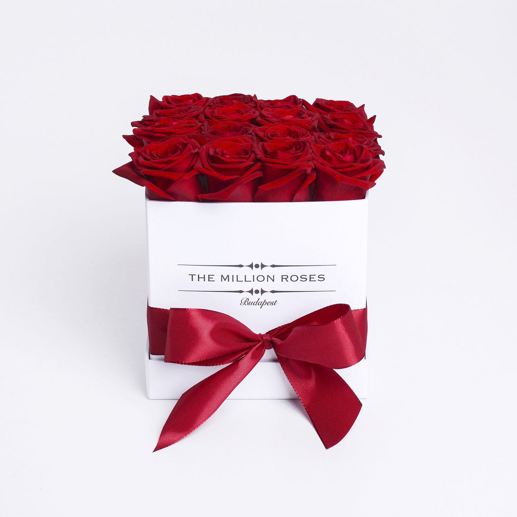 Cube - Red Roses - White Box - The Million Roses Budapest