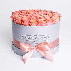 Medium - Peach Roses - Silver Box - The Million Roses Slovakia