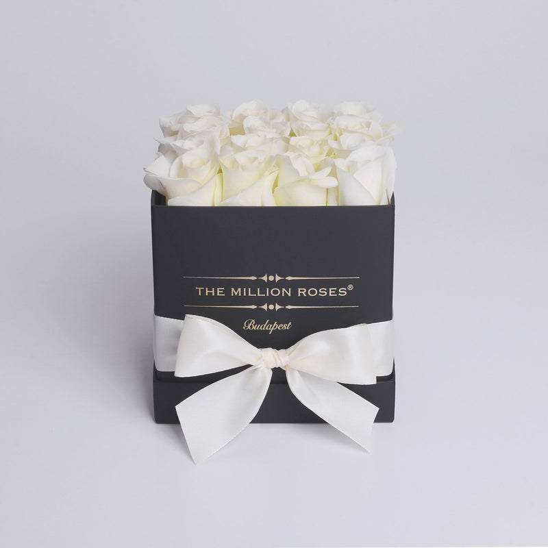 Cube - White Roses - Black Box - The Million Roses Slovakia