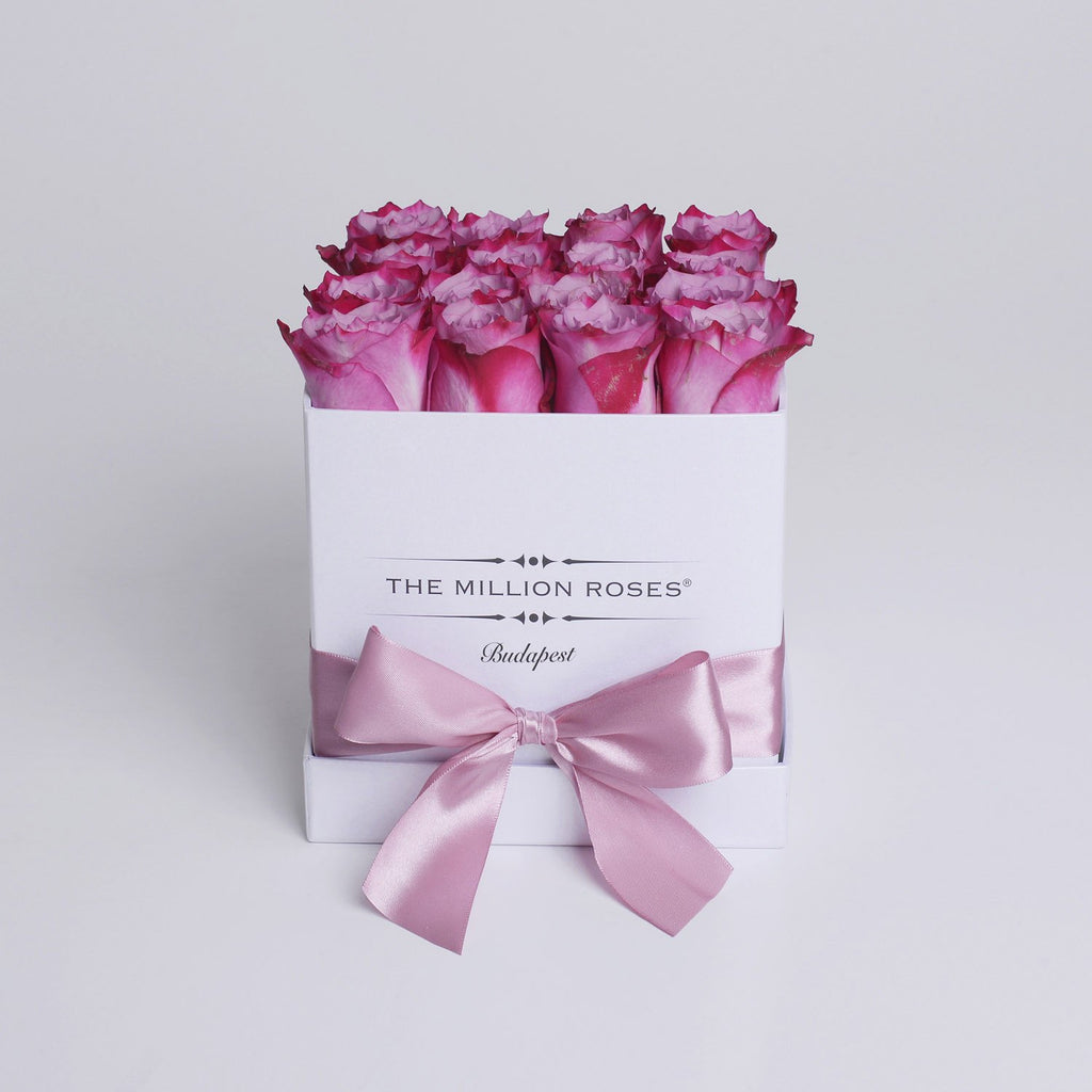 Cube - Pink Roses - White Box - The Million Roses Slovakia