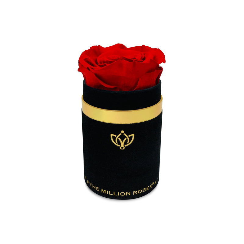 Single Rose Box - Black Suede - The Million Roses Slovakia