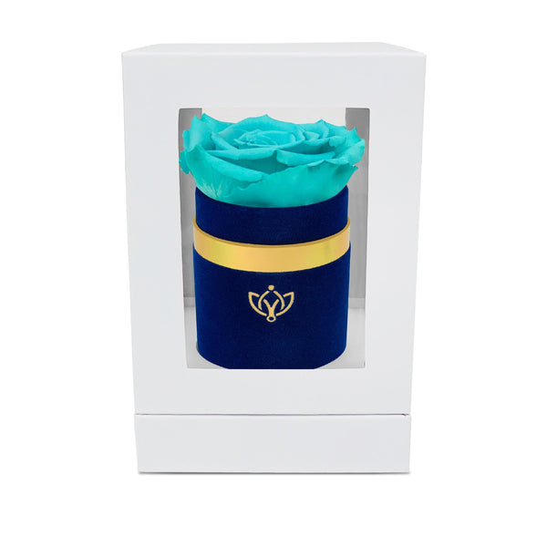 Single Rose Box - Blue Suede - The Million Roses Slovakia