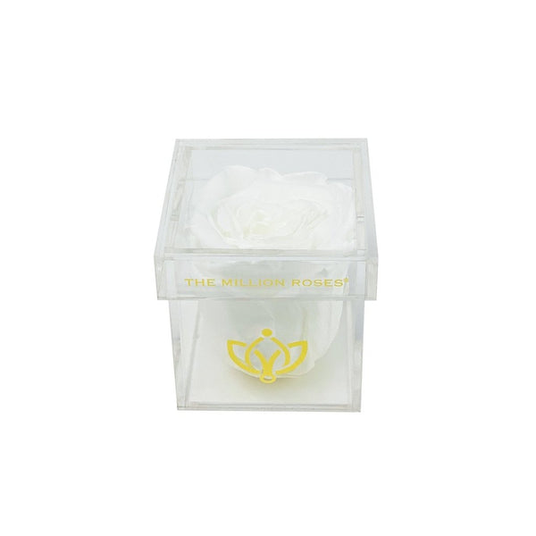 The Acrylic - Single Rose Box - The Million Roses Slovakia