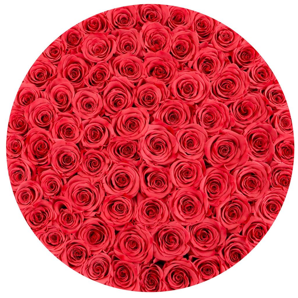 The Million Roses Europe - The Million Large Luxury Box - Coral Eternity Roses - White Mox Delivered Anywhere in Europe
