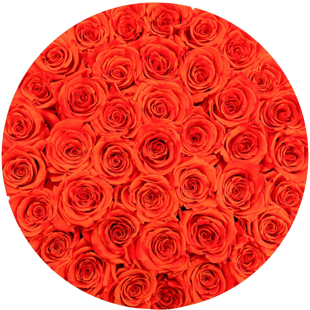 The Million Roses Europe - Medium - Hermès Orange Eternity Roses - White Box Delivered Anywhere in Europe