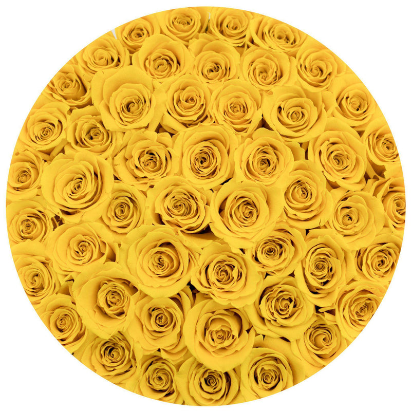 Medium - Yellow Roses - Black Box - The Million Roses Slovakia