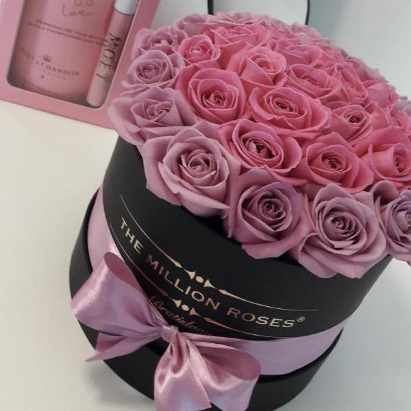 Small - Purple & Pink Roses - Black Box - The Million Roses Slovakia