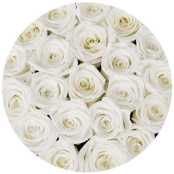 Small - White Eternity Roses - Pink Box - The Million Roses Slovakia