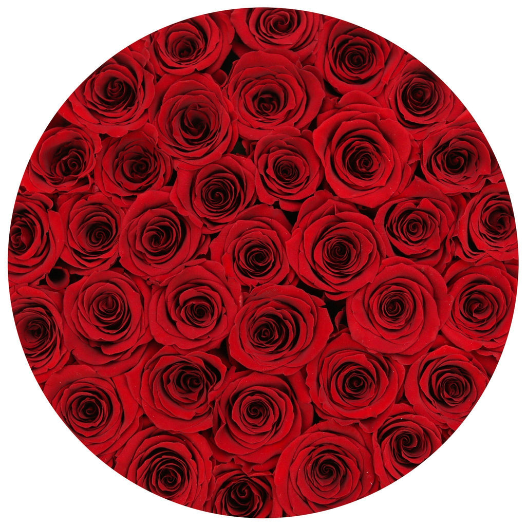 The Million Roses Europe - Medium - Red Eternity Roses - Black Box Delivered Anywhere in Europe